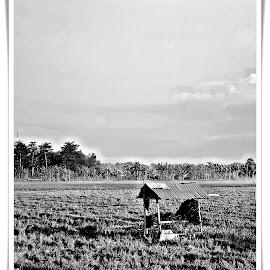 Gubuk by Muhammad Mutho'i - Black & White Landscapes