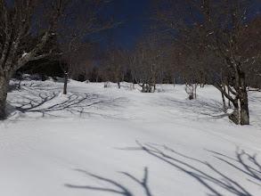 急な斜面だが雪が硬いので一気に