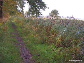 Photo: langs de andere kant van het kanaal lopen ze door het mooie gras en de blub, ik neem een fietspad en dat is erg mooi! Het rijdt wat zwaar, en later zal blijken waarom. Voorlopig geniet ik van het uitzicht! Dit belooft een mooie dag, en ik word gezellig wakker!