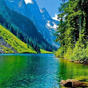 Nature HD Images