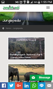 JungleRoads- screenshot thumbnail