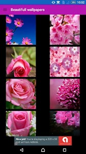 Flowers  wallpaper by Wallpix screenshot 9