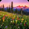 com.acs.mountainflowers.free