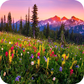 Mountain Flowers Live Wallpaper