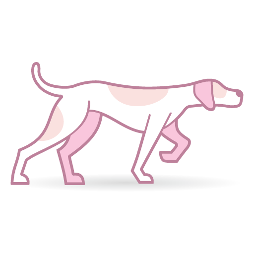 Pink Pointer avatar image