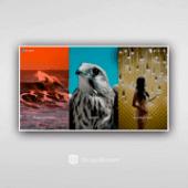 Grupoboom instagram diseño web portfolios creativos