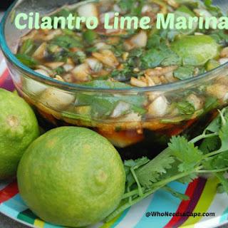 Cilantro Lime Marinade