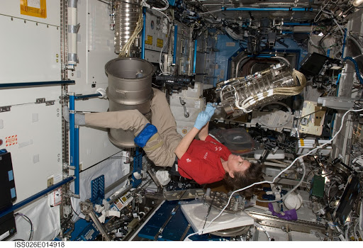 Coleman installs new furnace in the MSL - U.S. Laboratory during Expedition 26