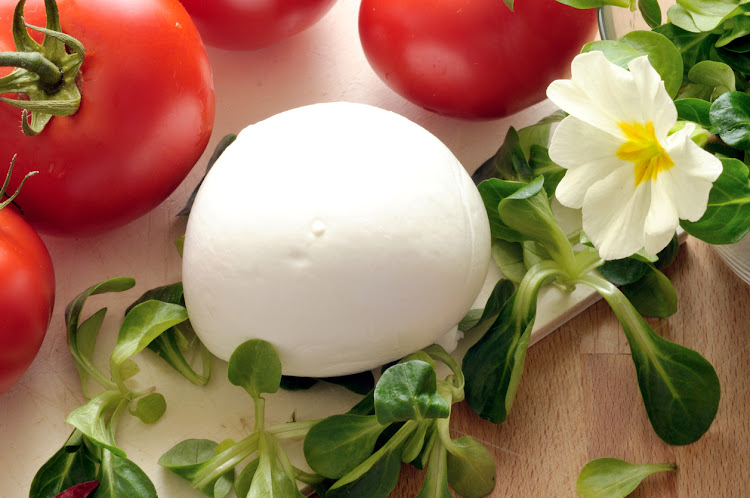 DNA-tested 16 samples of so-called buffalo mozzarella bought from both supermarkets and restaurants revealed that 11 were indeed from buffalo milk, but five were not.