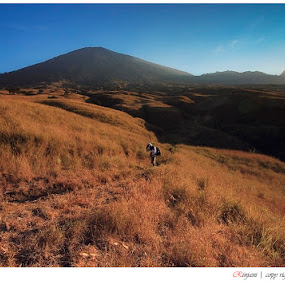 mountain of rinjani by Alfian Pebriadi - Landscapes Mountains & Hills