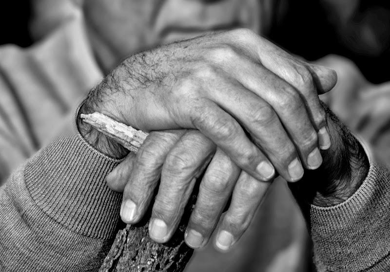 Mani vissute di Diana Cimino Cocco