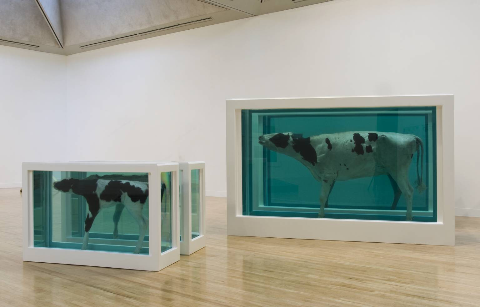 Mother and Child Divided exhibition copy 2007 (original 1993) by Damien Hirst born 1965