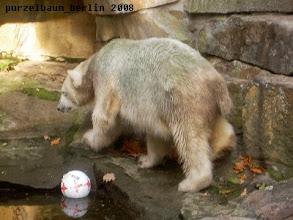 Photo: Poolumrundung - da ist schon mal ein Ball ;-)