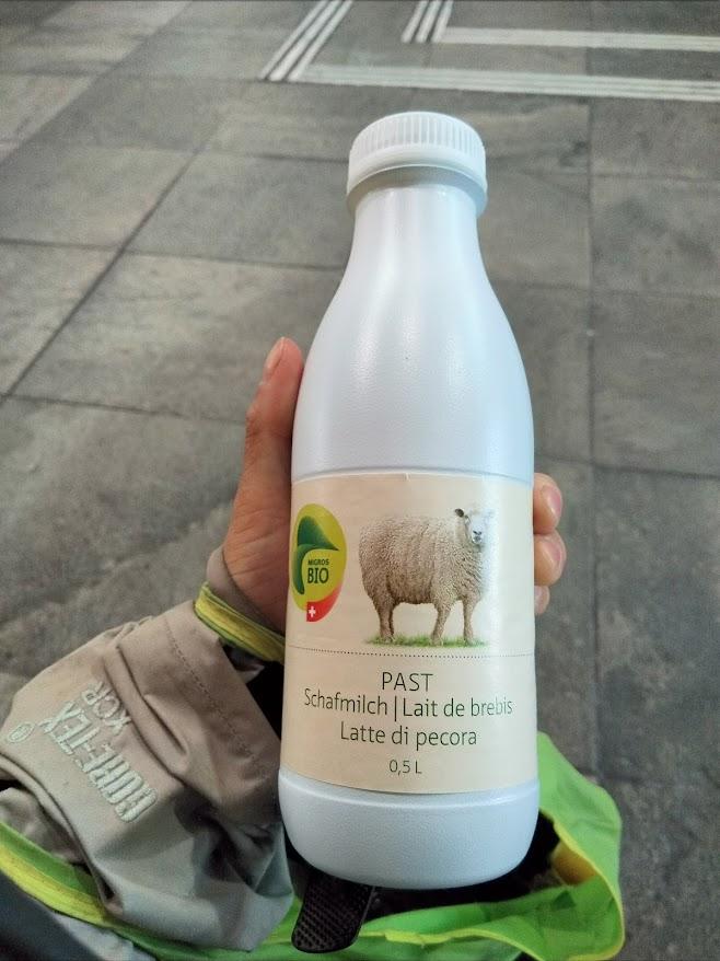 羊のミルク