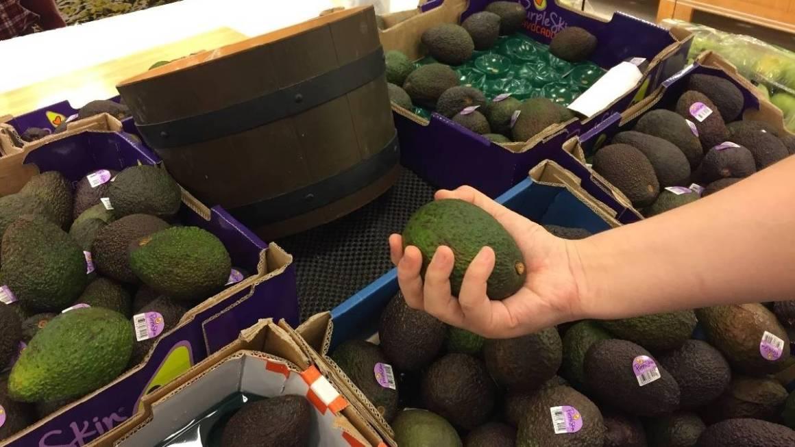 person squeezing avocado