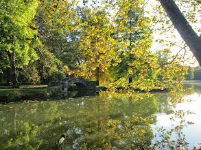 Photo: Golden-touched leaves overhanging a pond with a stone bridge at Eastwood Park in Dayton, Ohio.