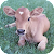 Cow Wallpapers file APK for Gaming PC/PS3/PS4 Smart TV
