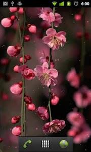 flower wallpaper free screenshot 1