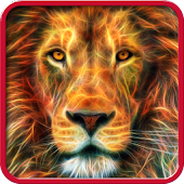 Lion, live wallpaper.