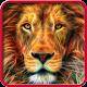 Lion, live wallpaper. Download on Windows