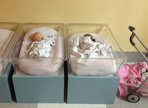 Photo: babies to tend to