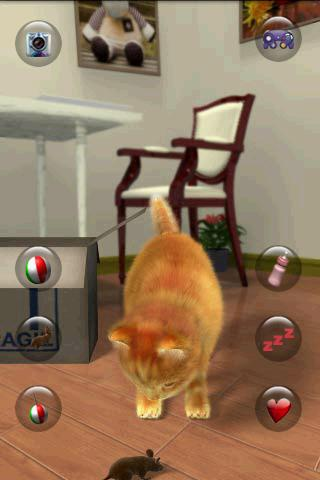 Talking Lovely Cat apkpoly screenshots 3