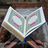 Quran (in Arabic)