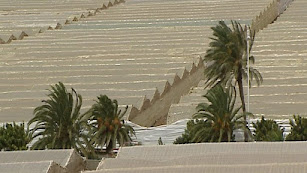 Invernaderos construidos en la zona del Sáhara