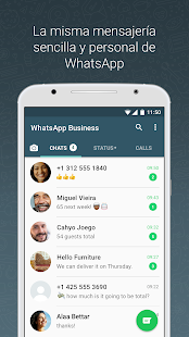 WhatsApp Business (WhatsApp para Negocios) Screenshot