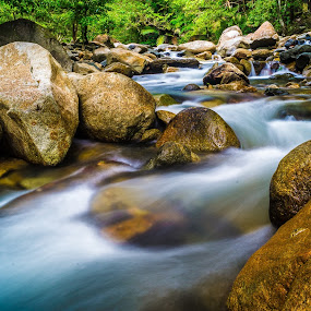 by Shahirul Faizul - Landscapes Forests