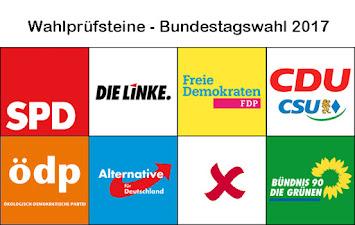 Wahlprüfsteine 2017.jpg