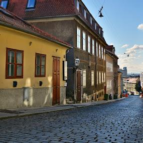 Upper town 2 by Filip Caric - City,  Street & Park  Street Scenes ( upper town, autumn, street, croatia, zagreb )