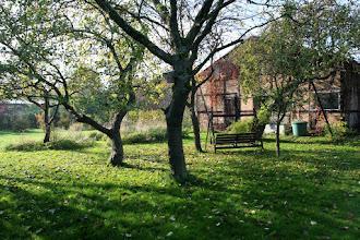 Photo: Die Blätter fallen: Durchatmen im Herbst