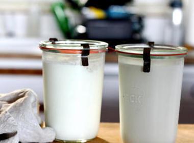Home Made Sourcream/yogurt Recipe