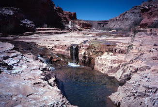 Photo: Kanab Creek, Kanab Creek Wilderness, Arizona