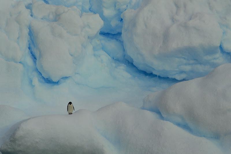 Ghiaccio blu di umby2001