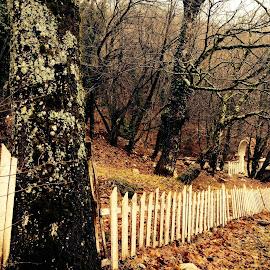 by Arber Shkurti - Novices Only Landscapes ( #albania, #visitalbania )