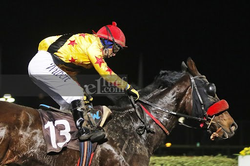 Dirty Gold (Passion for Gold) se quedó con la victoria en Handicap (1200m-Arena-HCH). - Staff ElTurf.com