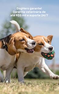DogHero - Hotel para cachorro domiciliar - náhled
