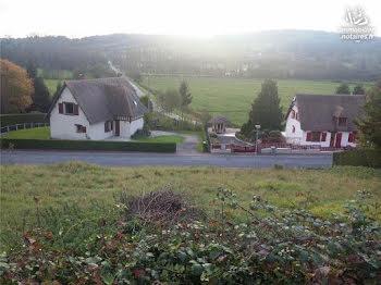 terrain à La Chapelle-Yvon (14)