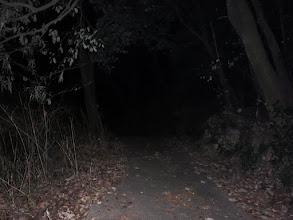 暗い歩道を登る