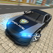 Police Car Chase-Criminal Case