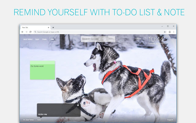 Funny Dog Wallpaper HD Custom New Tab