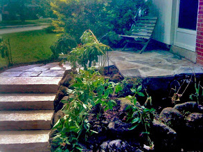 Photo: Pull steps and pathways out from the front door to make a more welcoming entrance.