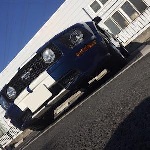 マスタング コンバーチブル  09 GTのカスタム事例画像 PONY-Kさんの2018年12月01日10:45の投稿