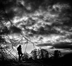 Photo: The Spider's Web   #womenwednesday  +Women Wednesday Curators +Niki Aguirre +Lee Daniels +Christina Lawrie +Athena Carey +Teresa Stover +Kerry Murphy
