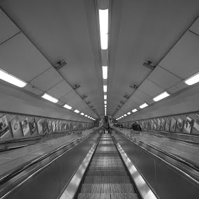 Going Underground by Simon Sweetman - Black & White Street & Candid ( london, station, tube, down, underground, decending, escalator )