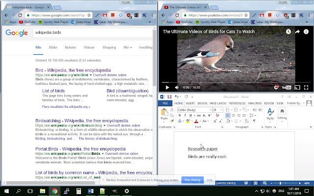 YouTube Windowed Fullscreen