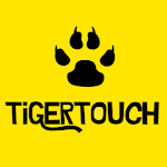 Tiger Touch Icon
