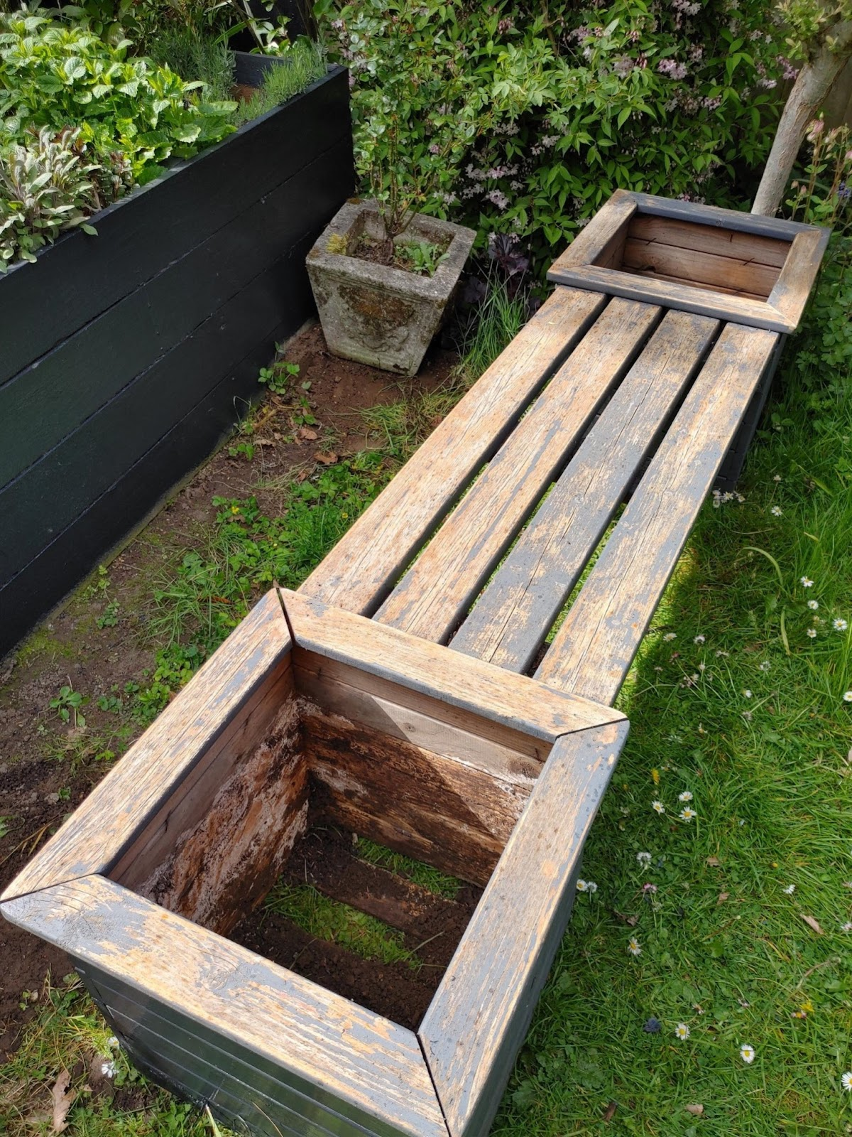 The bench from last year that hadn't been sanded down